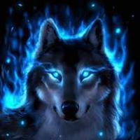 bluewolf's picture